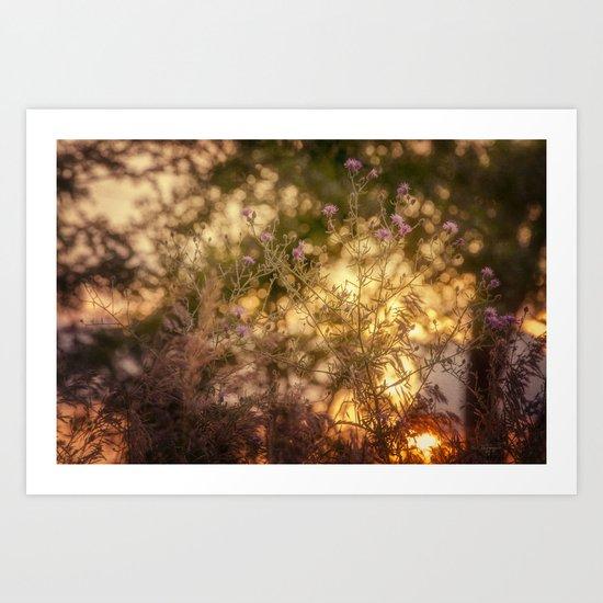 Dance of the Setting Sun Art Print