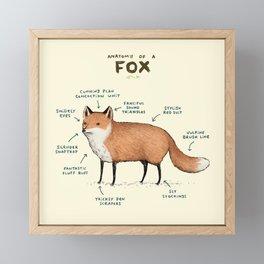 Anatomy of a Fox Framed Mini Art Print