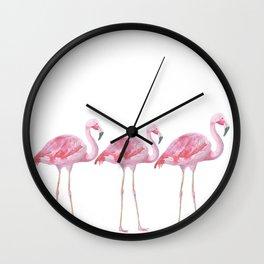 Flamingo - Pink Bird - Animal On White Background Wall Clock