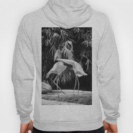 Flamingos (Black and White) Hoody
