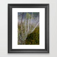 web in the field Framed Art Print