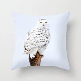 Join me on my journey Throw Pillow