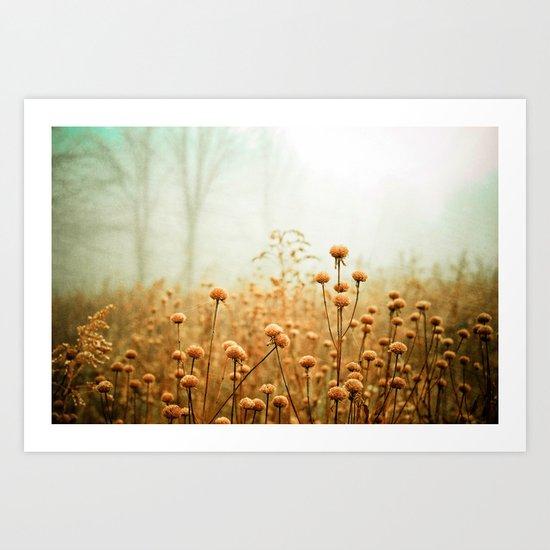 Daybreak in the Meadow Art Print