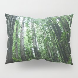 Redwood National Park- Pacific Northwest Nature Photography Pillow Sham