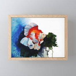 Ryukin Goldfish Framed Mini Art Print