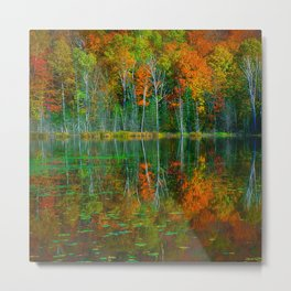Forest and Lake Reflection Metal Print
