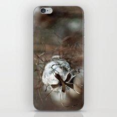 {faded love} iPhone & iPod Skin