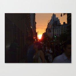 14th St Manhattanhedge Canvas Print