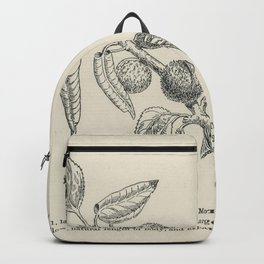 The fruit growers guide  Vintage  of apricot moth Backpack