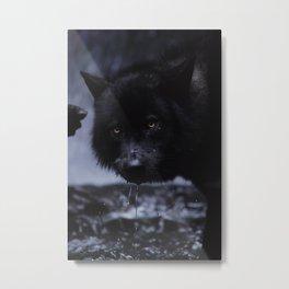 River Guardian Metal Print