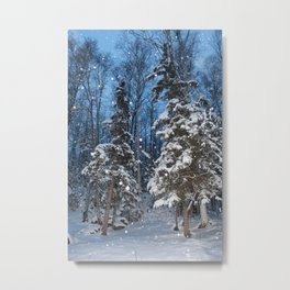 Bright Winter Snow 2 Metal Print