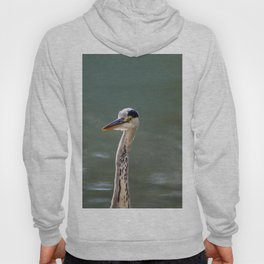 Grey Egret close up Hoody
