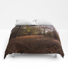 Fall Comforters