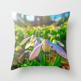 Springtime Flowers Throw Pillow