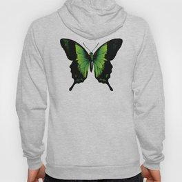 Green Butterfly Hoody