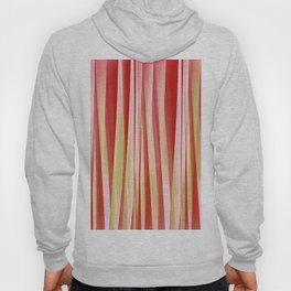 Living Coral and Blood Orange Striped Pattern Hoody