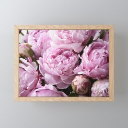 Dream on, Peonies... Framed Mini Art Print