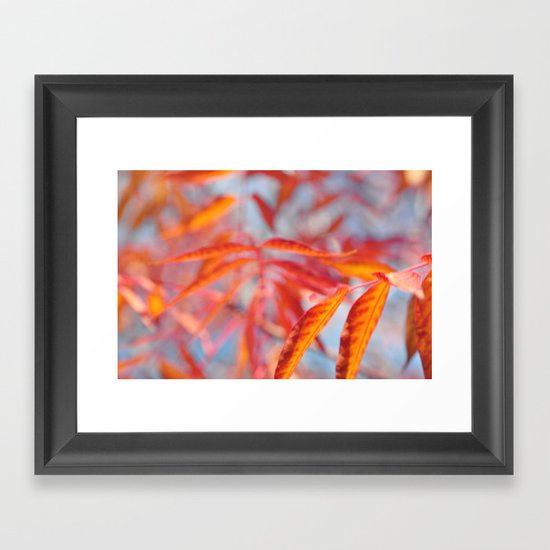 Autumnal Bliss... Framed Art Print