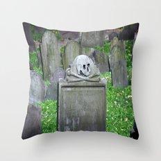 1769  Throw Pillow