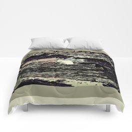 Demands Comforters