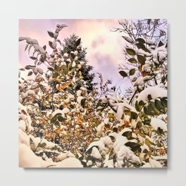Fresh Snow On Colored Leaves Metal Print