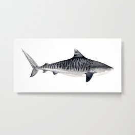 TIGER SHARK-navy blue Metal Print