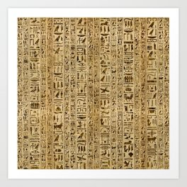 Egyptian hieroglyphs on papyrus Art Print