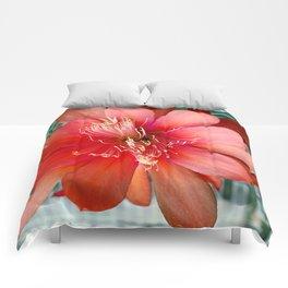 Flamingo Floaty Comforters