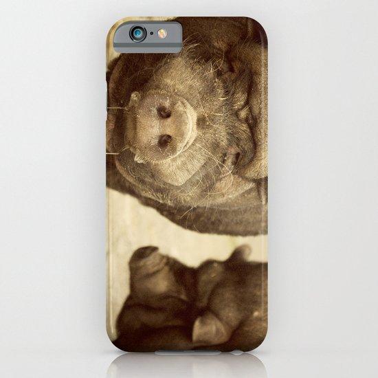 los cerditos de mi tia iPhone & iPod Case