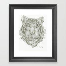 Wildcat Kurt  Framed Art Print