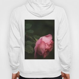 Pink rose. Raindrops on petals. Hoody