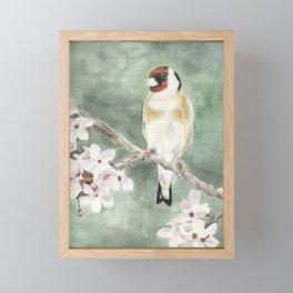 Goldfinch in blossom on green Framed Mini Art Print
