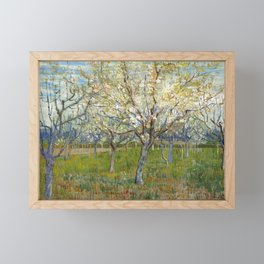 Orchard with Blossoming Apricot Trees by Vincent van Gogh Framed Mini Art Print