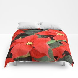 Beautiful Red Poinsettia Christmas Flowers Comforters