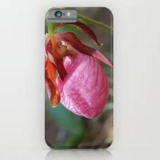 The Pink Lady Slipper iPhone 6s Slim Case