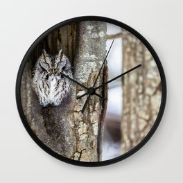 Sleeping Screech owl Wall Clock