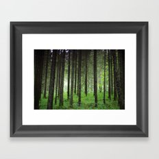 Woods. Framed Art Print