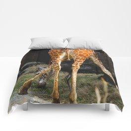 Baby Giraffe Butt Comforters