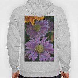Purple Daisy Hoody