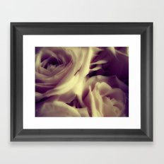 {English Rose} Framed Art Print