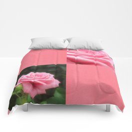 Pink Roses in Anzures 3 Blank Q11F0 Comforters