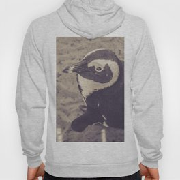 Adorable African Penguin Series 2 of 4 Hoody