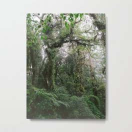 Monteverde Cloud forest | Costa Rica nature eco travel photography | Shades of green Metal Print