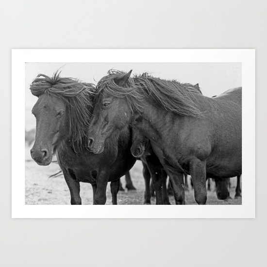 PONIES IN THE WIND Art Print