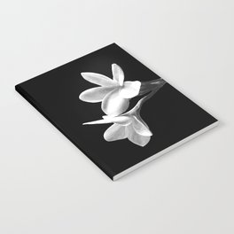 White Flowers Black Background Notebook