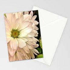 Daisy on Daisy Stationery Cards
