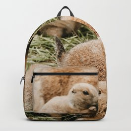 A Family of Groundhogs Backpack