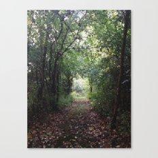 Natures Path Canvas Print