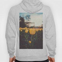 Field of Tulips Hoody