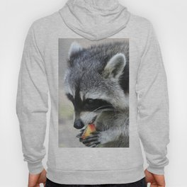 Raccoon_003_by_JAMFoto Hoody